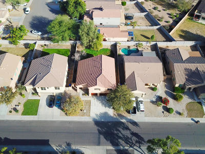 San Tan Valley Single Family Home For Sale: 40957 N Arbor Avenue