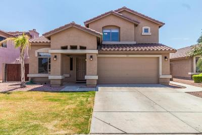 Surprise Single Family Home For Sale: 15867 W Tasha Drive