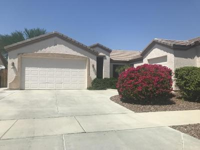 Surprise Single Family Home For Sale: 13578 W Evans Drive