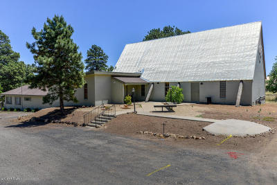 Commercial For Sale: 7725 N Us Highway 89