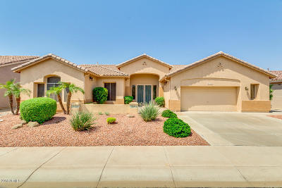 Maricopa County, Pinal County Single Family Home For Sale: 4552 E Mia Lane