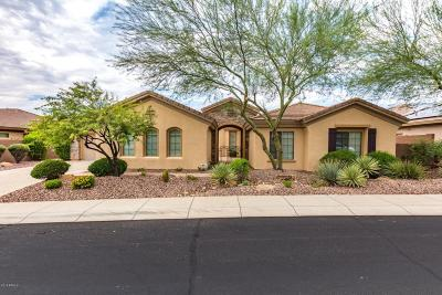 Phoenix Single Family Home For Sale: 41802 N Congressional Drive