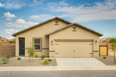 Florence Single Family Home For Sale: 10517 E Verbina Lane