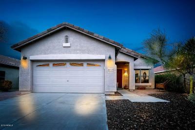 Gold Canyon Single Family Home For Sale: 18260 E El Amancer