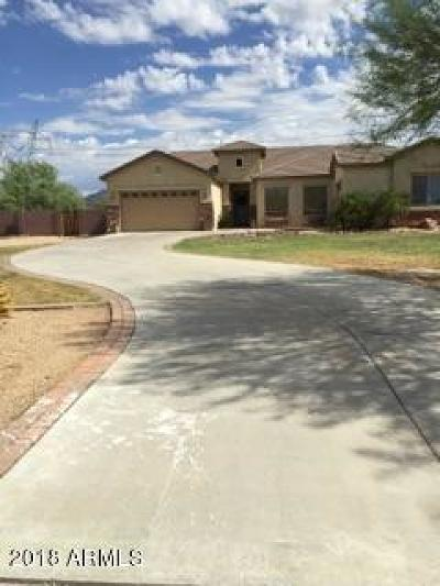 Buckeye Single Family Home For Sale: 22858 W Durango Street