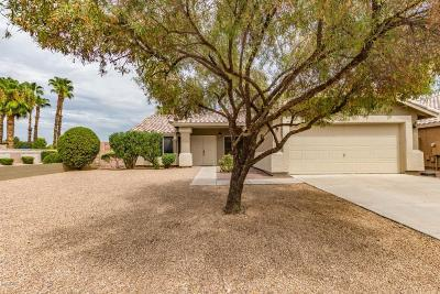 Gilbert Single Family Home For Sale: 1797 S Spartan Street