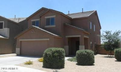 Single Family Home For Sale: 36127 W Velazquez Drive