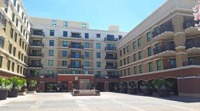 Commercial For Sale: 6803 E Main Street #1122