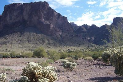 Apache Junction Residential Lots & Land For Sale: 6376 E Foothill Street