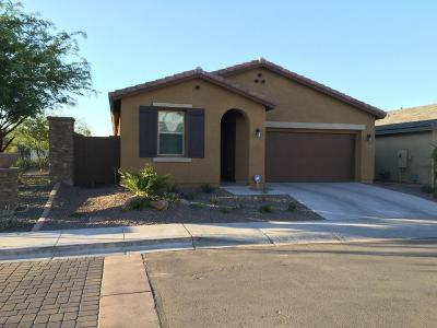 Prescott, Prescott Valley, Glendale, Phoenix, Surprise, Anthem, Avondale, Chandler, Goodyear, Litchfield Park, Mesa, Peoria, Scottsdale Single Family Home For Sale: 2204 E Ottawa Lane
