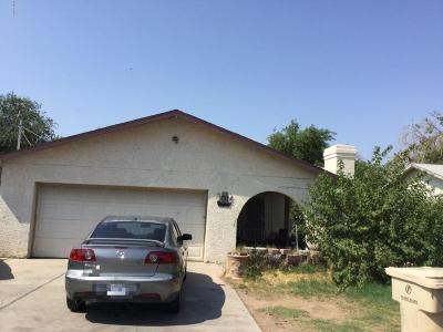 Glendale Single Family Home For Sale: 6228 W Sierra Vista Drive