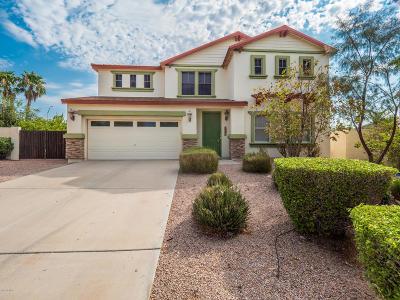 Mesa Single Family Home For Sale: 10528 E Olla Avenue