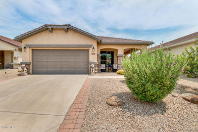 San Tan Valley Single Family Home For Sale: 31759 N Poncho Lane
