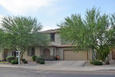 Mesa Single Family Home For Sale: 11232 E Sandoval Avenue