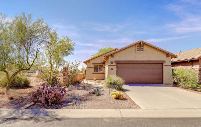 Gold Canyon Single Family Home For Sale: 10867 E Secret Canyon Road