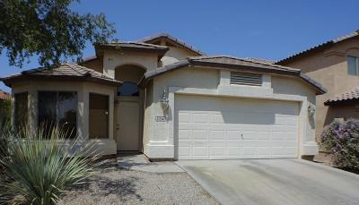 Maricopa County, Pinal County Single Family Home For Sale: 21296 N Van Loo Drive