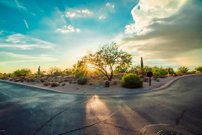 Scottsdale Residential Lots & Land For Sale: 8498 E Whisper Rock Trail