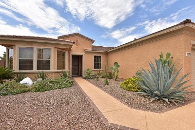 Surprise Single Family Home For Sale: 16355 W Desert Lily Drive