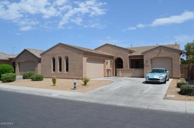 Chandler Single Family Home For Sale: 2558 E Desert Broom Place