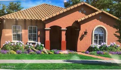 Gilbert AZ Single Family Home For Sale: $318,900