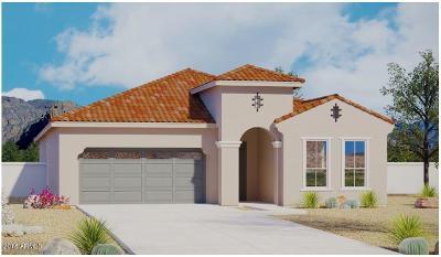 Phoenix Single Family Home For Sale: 6618 E Morningside Drive