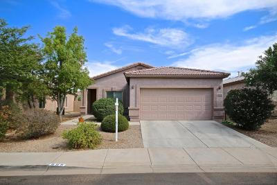 Queen Creek, San Tan Valley Single Family Home For Sale: 889 E Canyon Rock Road