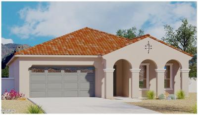 Phoenix Single Family Home For Sale: 6614 E Morningside Drive