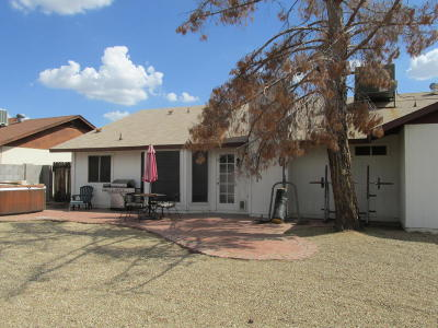 Phoenix Single Family Home For Sale: 1626 W Beaubien Drive