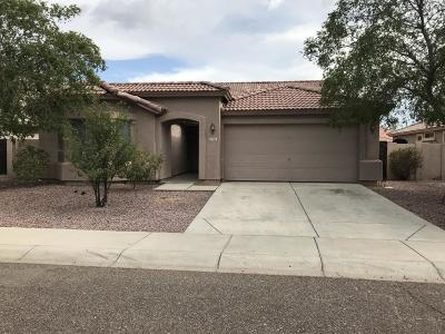 Glendale Single Family Home For Sale: 7163 W Discovery Drive