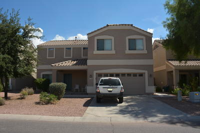 Queen Creek, San Tan Valley Single Family Home For Sale: 1559 E Megan Drive