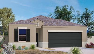 Casa Grande Single Family Home For Sale: 2406 E San Gabriel Trail