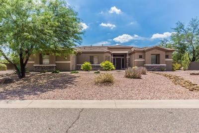 Phoenix Single Family Home For Sale: 4607 W Range Mule Drive