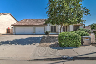 Mesa Single Family Home For Sale: 9453 E Jerome Avenue
