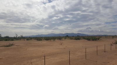 Surprise Residential Lots & Land For Sale: 17553 W Pinnacle Peak Road