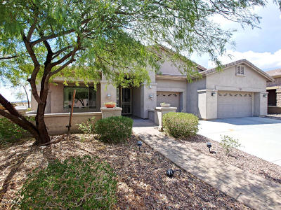 Phoenix Single Family Home For Sale: 26806 N 24th Lane