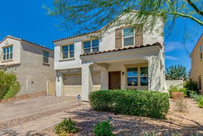 Mesa Single Family Home For Sale: 10230 E Starion Avenue