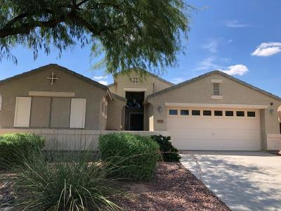 Queen Creek, San Tan Valley Single Family Home For Sale: 28020 N White Stone Way N