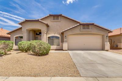 Maricopa Single Family Home For Sale: 21795 N Van Loo Drive