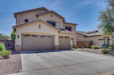 Maricopa Single Family Home For Sale: 21875 N Gibson Drive