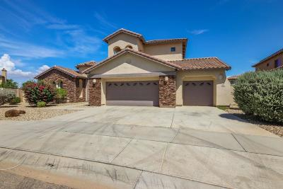 Litchfield Park Single Family Home For Sale: 766 W Azure Lane