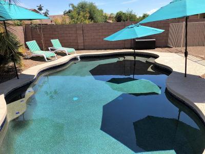 Maricopa Single Family Home For Sale: 44620 W Rhinestone Road