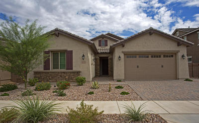 Queen Creek Single Family Home For Sale: 20285 E Hummingbird Drive
