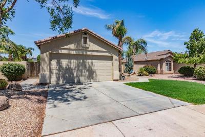 Surprise Single Family Home For Sale: 13392 W Port Royale Lane