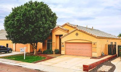 Avondale Single Family Home For Sale: 11527 W Dana Lane