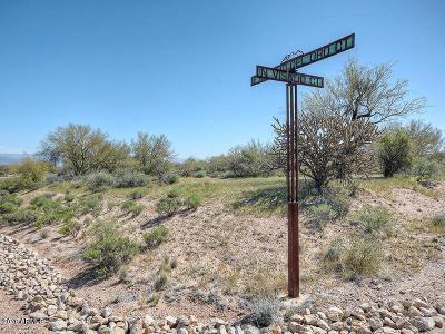 Scottsdale Residential Lots & Land For Sale: 31119 N Visado Court