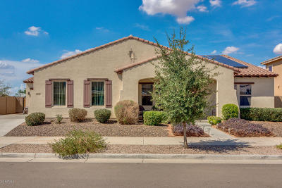 Queen Creek Single Family Home For Sale: 21324 E Via De Arboles