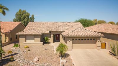 Sun Lakes Single Family Home For Sale: 10016 E Nacoma Court