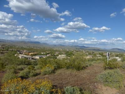 Phoenix Residential Lots & Land For Sale: 33821 N 2nd Avenue