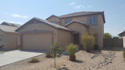 San Tan Valley Single Family Home For Sale: 5305 E Silverbell Road