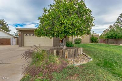 Mesa Single Family Home For Sale: 2518 E Hale Street